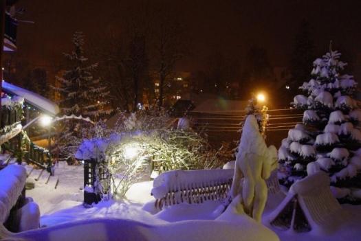 ogród-nocą